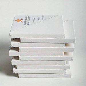10 TOILES SUR CHASSIS ART-STAR 30x40 cm | prêtes à peindre, 100% coton, idéal p. artistes débutants de la marque BK BILDERRAHMEN KOLMER image 0 produit
