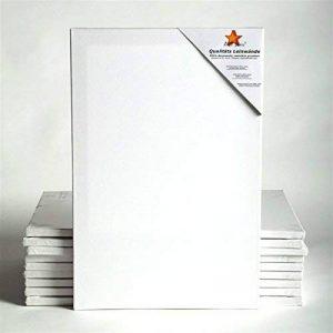 10 TOILES SUR CHASSIS ART-STAR 30x60 cm | prêtes à peindre, 100% coton, idéal p. artistes débutants de la marque BK BILDERRAHMEN KOLMER image 0 produit