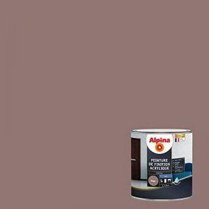 ALPINA Peinture de finition - Acrylique - Mat Taupe 0,5L 6m² de la marque Alpina image 0 produit