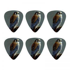 American Kestrel sur branche Peinture fantaisie Guitare Picks Tirant medium–Lot de 6 de la marque Graphics and More image 0 produit