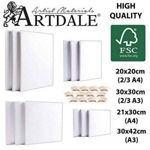 Artdale Lot de 12toiles blanches, Contour standard 17mm, Cadre en bois carré 20/30cm et cadre rectangulaire 20x 30/30x 40cm, 100% coton, Toiles pour étudiants/artistes, peinture acrylique et plus de la marque Artdale image 0 produit