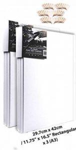 Artdale Lot de 6Standard Edge 17mm encadrée vierge Pre toiles Triple Apprêt Blanc 29.7cm x 42cm/29,5x 41,9cm Cadre en bois 100% coton étudiant/artistes Huile sur toile Acrylique et plus de la marque Artdale image 0 produit