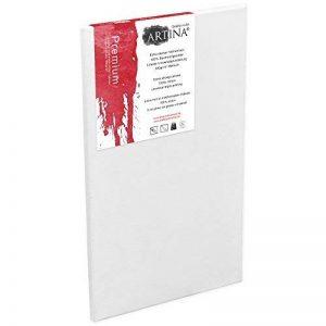 Artina - Châssis entoilé - Toile à peindre - Premium - Qualité fine - Apprêtée 3 fois - 60x120cm 380g/m² de la marque Artina image 0 produit