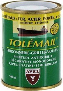 Avel 530345 Tolémail spécial ferronnerie 100 ml Blanc de la marque AVEL image 0 produit