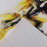 Canson Arts graphiques C à Grain 200027185 Papier à dessin A3 29,7 x 42 cm 20 feuilles Blanc naturel de la marque Canson image 1 produit