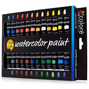 Colore - Ensemble d'Aquarelle - Ensemble de peinture d'Art de qualité supérieure pour les artistes, les étudiants et les débutants - 24 couleurs de peinture aquarelles richement pigmentées de la marque Colore image 0 produit