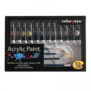 COLORGAYO Set De Peinture En PropylEne Non Toxique De 12ml Avec12 Couleurs de la marque COLORGAYO image 0 produit