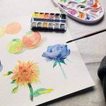 De qualité professionnelle, aquarelles 12couleurs Paul Rubens Artiste d'eau de couleur fait avec gomme arabique, Fiel de bœuf et Pure pigments, haute transparence et résistance à la lumière 12 Colors de la marque Paul Rubens image 3 produit
