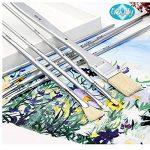 différents pinceaux peinture TOP 4 image 3 produit