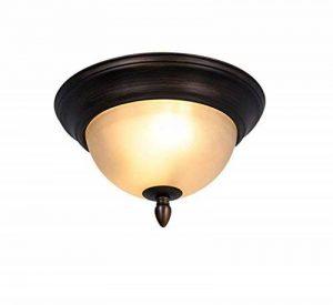 Fer à repasser, plafond American rétro style rural rural chambre Cuisine Balcon Salle de bains allée lumières plafond lumineux série E27 Lampe de plafond facile à nettoyer (Taille: diamètre 40,5 cm) de la marque EQEQ image 0 produit