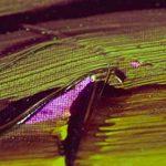 glacis peinture TOP 1 image 1 produit