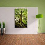 Grand arbre dans la jungle Format: toile 100x70auf, XXL énormes Photos complètement encadrés par la civière, l'impression de l'image Art mural avec cadre, moins cher que peintures à l'huile et de l'image, aucune affiche ou poster de la marque Pixxprint image 2 produit