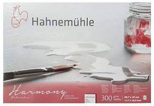 Hahnemühle Harmony Bloc aquarelle 12 feuilles 300 gr 29,7 x 42cm, Moulin du coq de la marque Hahnemühle ESPACEBEAUXARTS image 0 produit