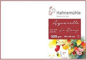 Hahnemühle Moulin du coq 10feuilles de papier aquarelle 325g 50x 65cm de la marque Hahnemuhle image 0 produit