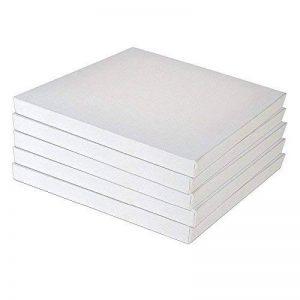 Lot de 5 Toiles Vierges Toiles Tendues Cadres de Toiles Tendues EXTRA LARGE 8 x 8 Pouces (20 cm x 20 cm) Toile d'Artiste Acid-Libre de Qualité Professionnelle (20x20x1.5cm) de la marque EAPEY image 0 produit