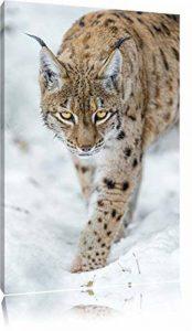 lynx vigilant dans la neige Toile, XXL photos complètement encadrée avec de grandes images de coin, art impression sur la photo murale avec cadre, moins cher que la peinture ou une peinture à l'huile, pas une affiche ou bannière de la marque Pixxprint image 0 produit