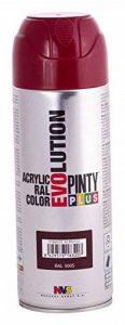 Novasol Spray C305BA5 Pinty Plus Evolution Lot de 6 Aérosols Peinture Acrylique Brillant Lie de Vin Ral 3005 400 ml de la marque Novasol spray image 0 produit