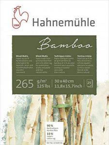 papier aquarelle hahnemühle TOP 9 image 0 produit