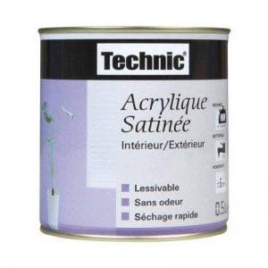 Peinture Acrylique satiné - Blanc - 0.5 L - TECHNIC de la marque Technic image 0 produit