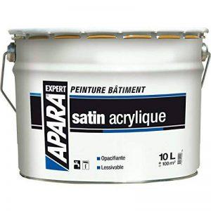 Peinture Blanc Satin Acrylique Bicouche APARA EXPERT 10 litres de la marque APARA image 0 produit