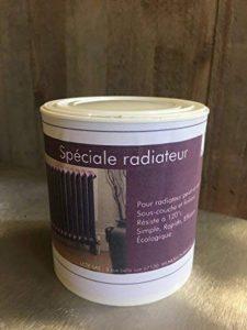 Peinture spéciale radiateur 500 ML - Satinée - Écologique (Blanc pur) de la marque Direct Usine image 0 produit