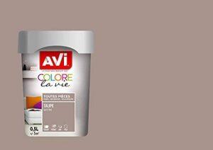 Peinture toutes pièces, Avi Colore la Vie - Taupe Satin, 0,5L de la marque AVI-8 image 0 produit