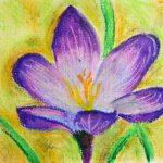 Pentel Pastels à l'huile Boîte de 50 couleurs de la marque Pentel image 1 produit