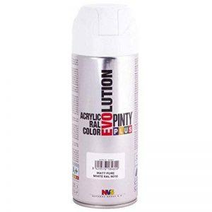 Pinty 600 Bombe 400 ml Blanc RAL 9010 mate de la marque Pinty image 0 produit