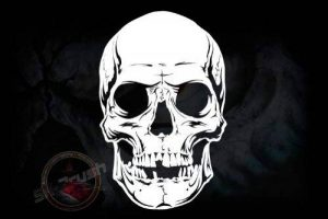 pochoir aérographe skull TOP 7 image 0 produit