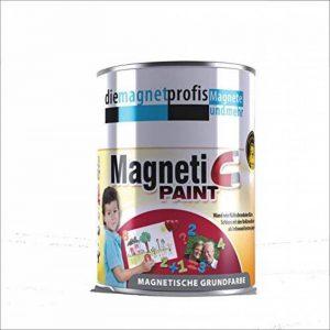 Pot de peinture - Extreme adhérence magnétique - Allergénique - Pour murs intérieurs - Sans conservateurs - Gris - 1litre de la marque die magnetprofis magnete und mehr image 0 produit