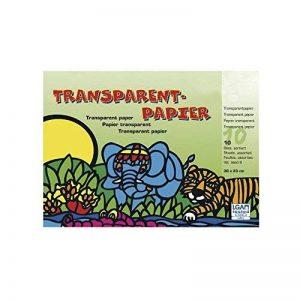 Rayher Hobby 81005000Papier Transparent, 10Couleurs, 20x 30cm, 42g/m2, Bloc 1 de la marque Rayher Hobby image 0 produit