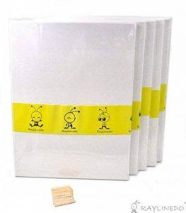 RayLineDo® Lot de 5toiles vierges sur cadre de 30x 40cm Toiles en coton pour peinture à l'huile et à l'eau de la marque RayLineDo image 0 produit