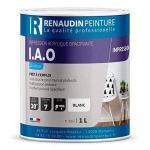 Renaudin Peinture 114119 Pot de peinture Blanc de la marque Renaudin Peinture image 0 produit