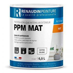 Renaudin Peinture 121301 Ppm Peinture acrylique mur/plafond intérieur/extérieur finition Mat Blanc 0, 5 L de la marque Renaudin Peinture image 0 produit