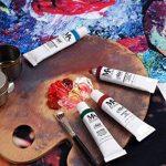 Set de peinture à l'huile – 24 tubes de couleur 12 ml – Peintures classe artiste pour professionnels, débutants et étudiants – Idéal pour peinture murale intérieure et extérieure, peinture sur toile, paysages & portraits – MozArt Supplies de la marque Moz image 3 produit