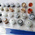 Shukqueen DIY Peinture par numéros pour adultes, DIY Kit de peinture à l'huile pour enfants débutants–Fleurs et oiseaux 40,6x 50,8cm, fleur, Framed Canvas de la marque Shukqueen image 1 produit