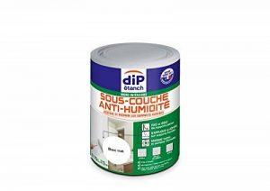 Sous-couche Anti-humidité, Dip étanch - Blanc Mat, 0,75L de la marque Dip étanch image 0 produit