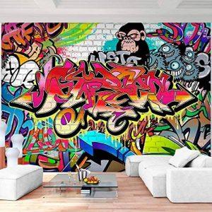 Tapisserie Photo Mur de pierre Graffiti 352 x 250 cm Laine papier peint Salon Chambre Bureau Couloir décoration Peinture murale décor mural moderne - 100% FABRIQUÉ EN ALLEMAGNE - 9065011a de la marque Images et Papier peint Runa image 0 produit