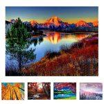 toile à peindre rectangulaire TOP 14 image 2 produit