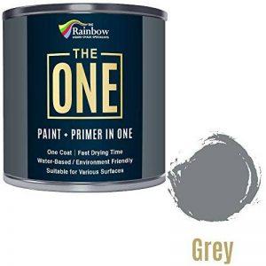 Une Peinture, un manteau, Multi Surface Peinture pour bois, métal, plastique, intérieur, extérieur, gris, brillant, 250ml de la marque The One image 0 produit
