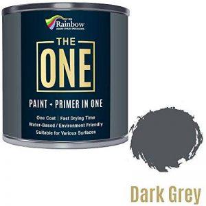 Une Peinture, un manteau, Multi Surface Peinture pour bois, métal, plastique, intérieur, extérieur, gris foncé, Satiné, 2.5litres de la marque THE ONE image 0 produit