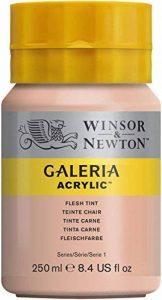 Winsor & Newton Galeria Peinture acrylique 250 ml Teinte Chair de la marque Winsor & Newton image 0 produit