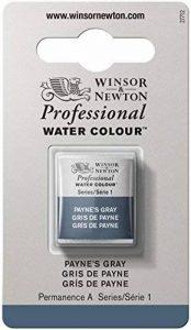 WINSOR & NEWTON PROFESSIONAL WATER COLOUR 1/2 GODET 465 GRIS DE PAYNE de la marque Winsor & Newton image 0 produit