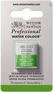 WINSOR & NEWTON PROFESSIONAL WATER COLOUR 1/2 GODET 503 VERT VESSIE PERMANENT de la marque Winsor & Newton image 0 produit